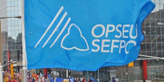OPSEU Flag